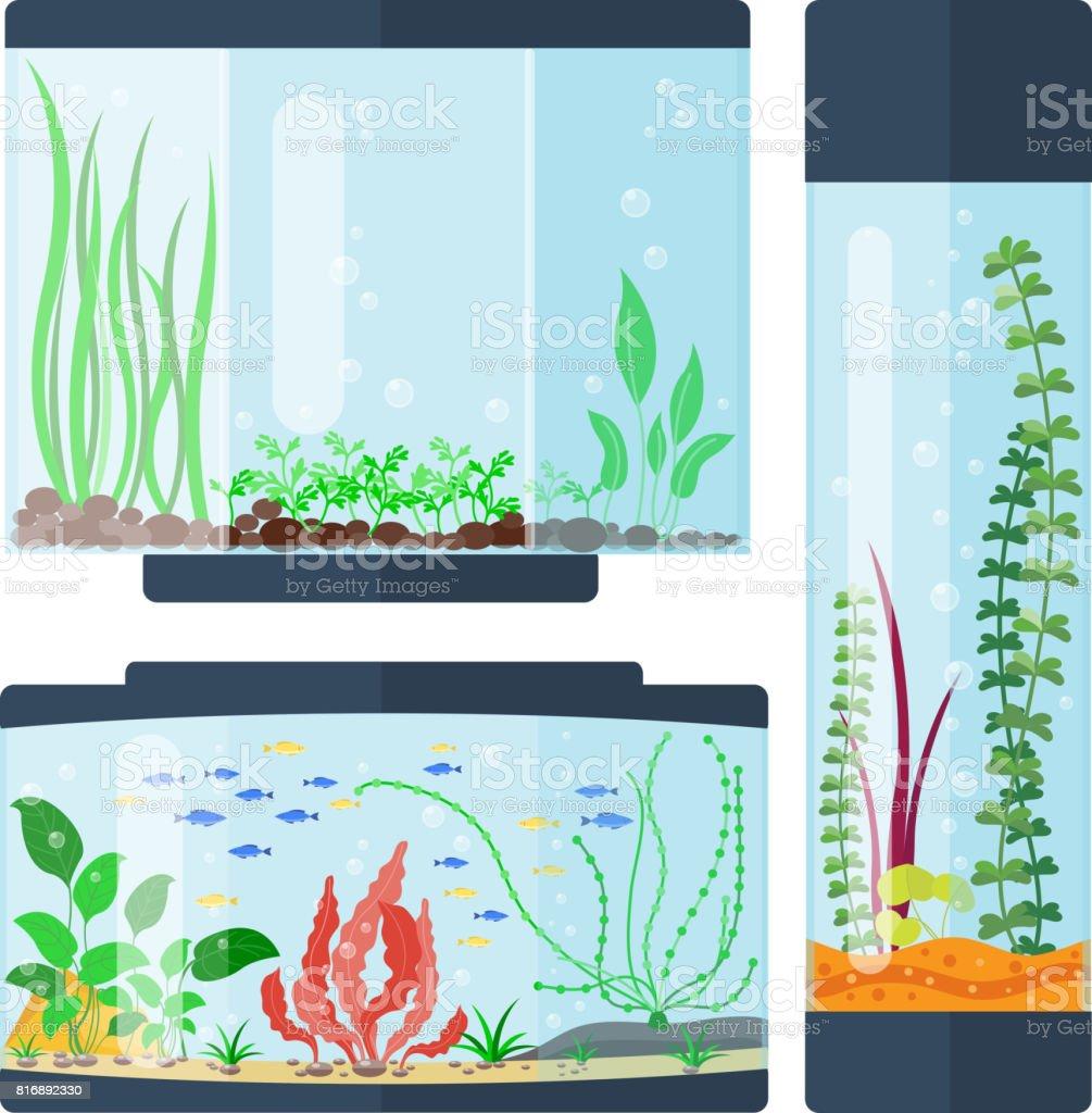 GroBartig Transparente Aquarium Vektor Illustration Lebensraum Wasser Tank Haus  Unterwasser Aquarium Schüssel Lizenzfreies Transparente Aquarium Vektor  Illustration