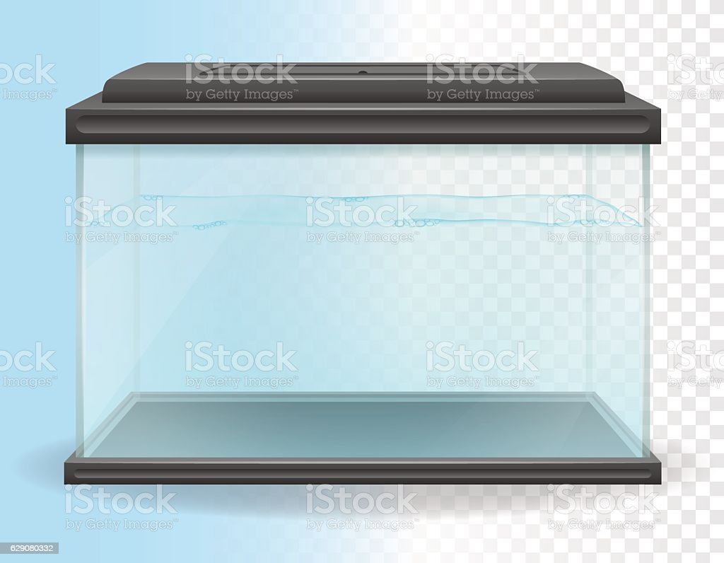 transparent aquarium vector illustration 벡터 아트 일러스트