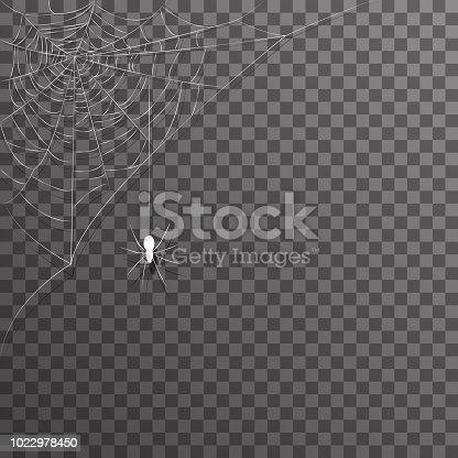 Transparent background corner hanging decoration spider web halloween vector illustration