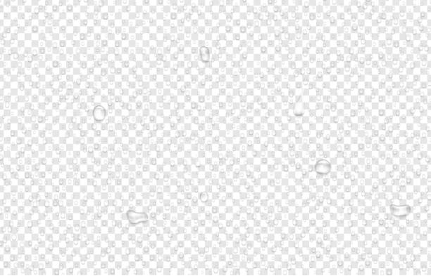 Transparent background with realistic water drops. Transparent background with realistic water or liquid drops. Dew on glass. Vector illustration. water stock illustrations