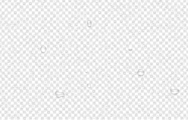 ilustrações de stock, clip art, desenhos animados e ícones de transparent background with realistic water drops. - água