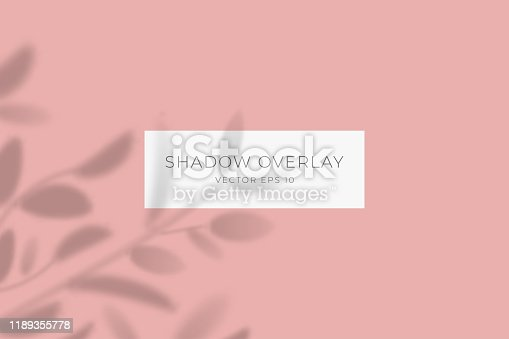 istock Transparent shadow overlay effect for branding. Drop shadow from the branches of plant on flat surface. Background for your design. Vector eps 10. 1189355778