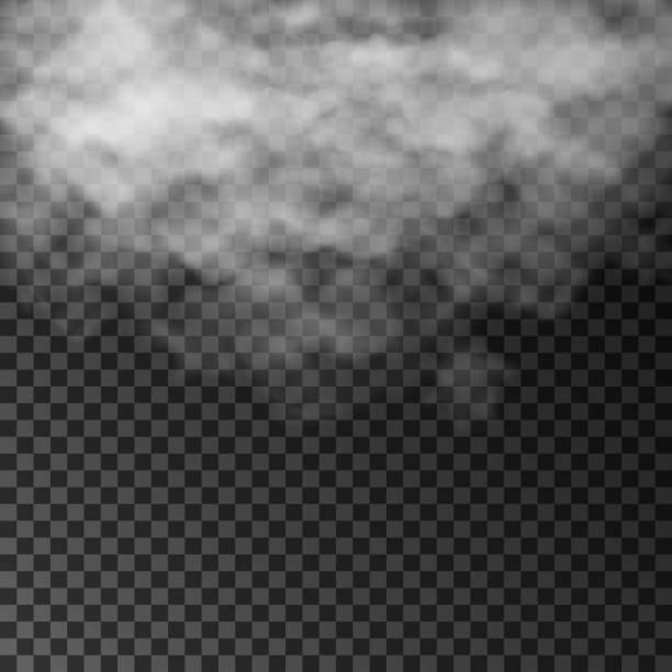 煙または蒸気の透明な特殊効果。孤立したベクトルフォグ、雲やほこり - 物理学点のイラスト素材/クリップアート素材/マンガ素材/アイコン素材
