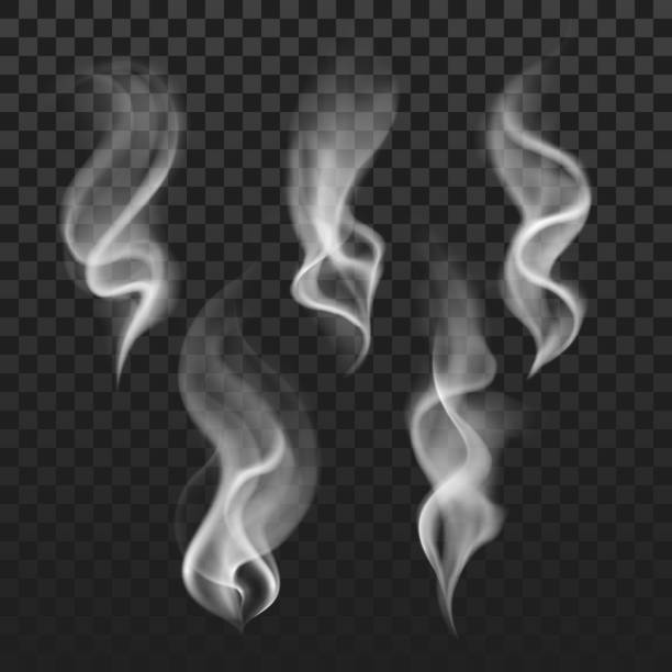 transparent steam, cigarette smoke waves, fog texture vector set - smoke stock illustrations