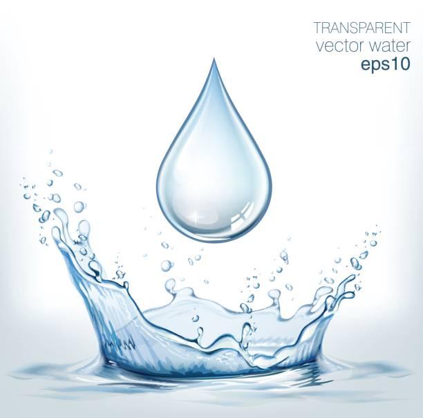 ilustrações, clipart, desenhos animados e ícones de água e respingos de água transparente vector cair na luz de fundo - fontes de bolha