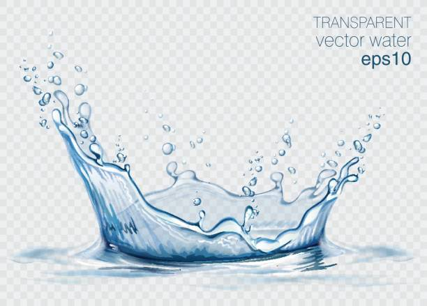 ilustrações de stock, clip art, desenhos animados e ícones de transparent vector water splash and wave on light background - water splash