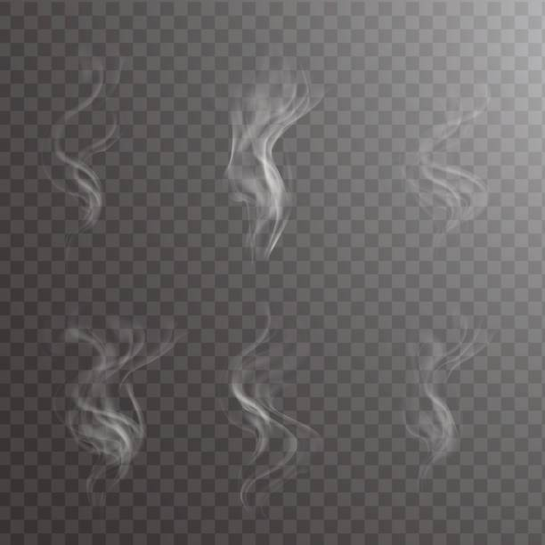 transparent white steam over cup on dark background background vector illustration. - smoke stock illustrations