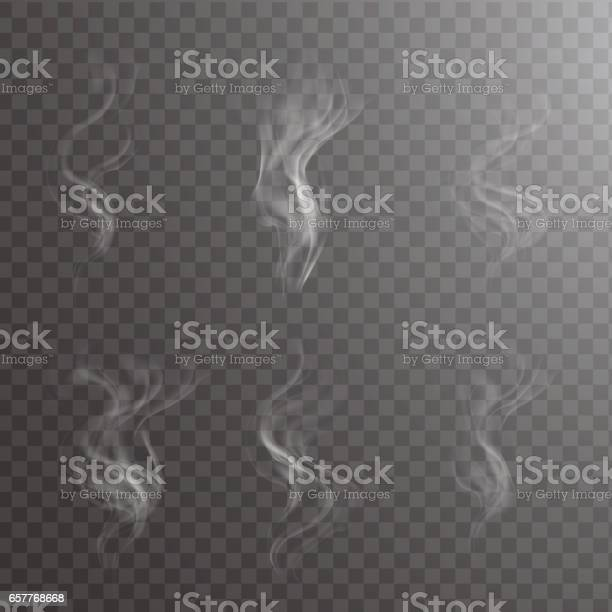 White cigarette smoke waves on transparent. Transparent white steam over cup on dark background background vector illustration.