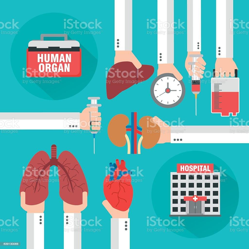 Transplantation Human organ design flat vector art illustration