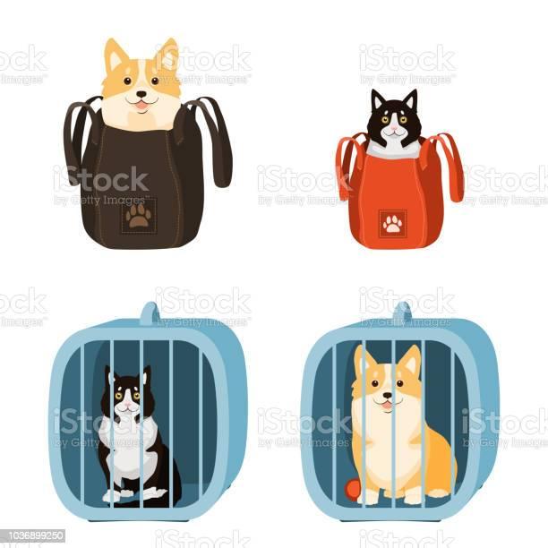 Travelling with pets vector illustration of dog and cat in a bag and vector id1036899250?b=1&k=6&m=1036899250&s=612x612&h=l45uvozxcafwmpgwlcgovupzhg376uxhrewsabxo2yq=