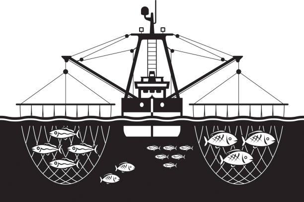 ilustrações de stock, clip art, desenhos animados e ícones de trawler ship catch fishes in the sea - fishing boat