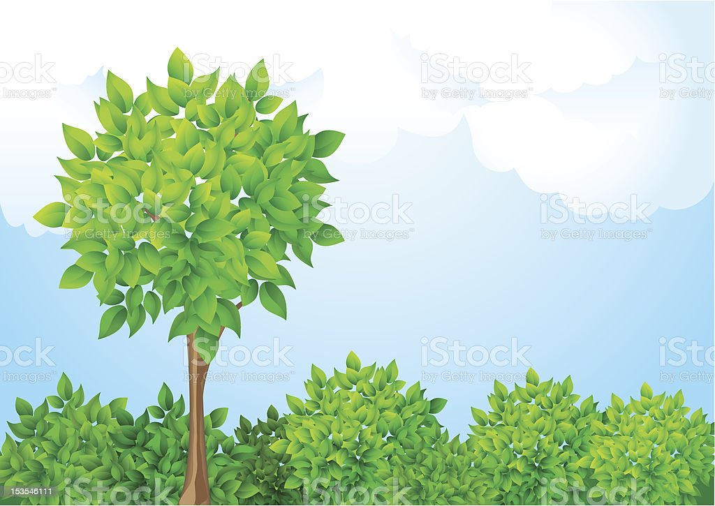 Tree and bushes royalty-free tree and bushes stock vector art & more images of backgrounds
