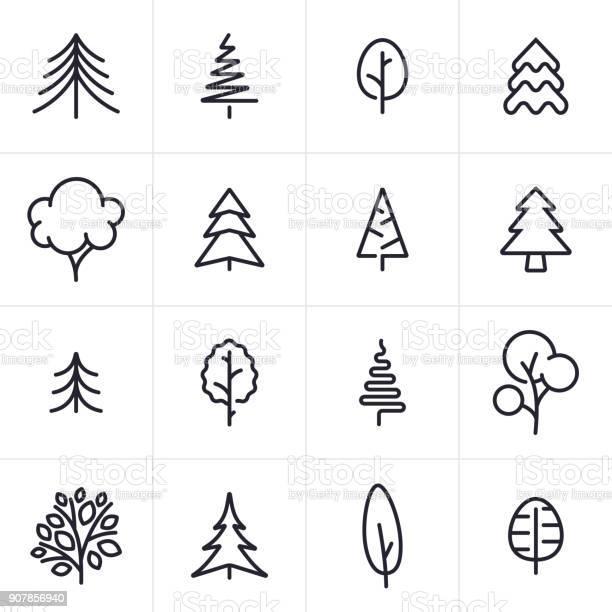 Tree and evergreen icons and symbols vector id907856940?b=1&k=6&m=907856940&s=612x612&h=ync6bfxrgg4tfwgemsyuge2vin7mlnewzu8coicdvqi=