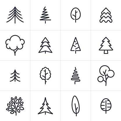 Tree And Evergreen Icons And Symbols - Immagini vettoriali stock e altre immagini di Abete