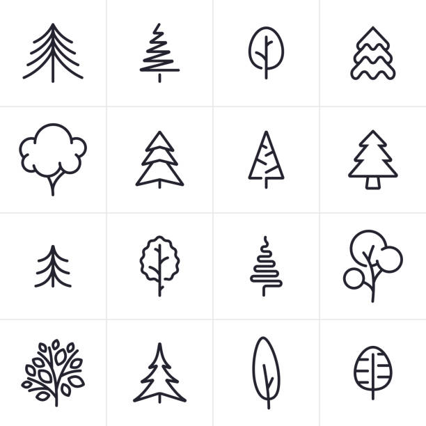 Tree and Evergreen Icons and Symbols Tree and pine tree icons and symbols collection. pine tree stock illustrations