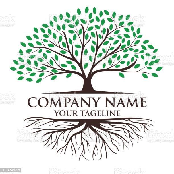 Boom En Wortels Logo Illustratie Levensboom Logo Ontwerp Inspiratie Stockvectorkunst en meer beelden van Abstract
