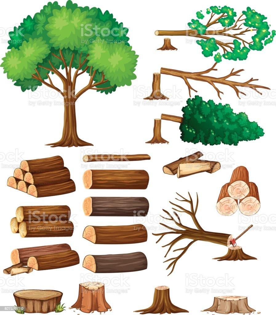Baum und stumpf Bäume – Vektorgrafik