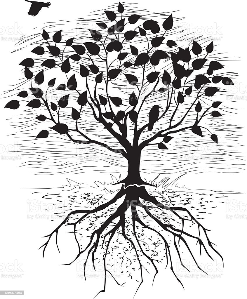 Tree And Visible Roots Black Silhouette With Engraved ...