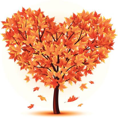 Tree Autumn Heart