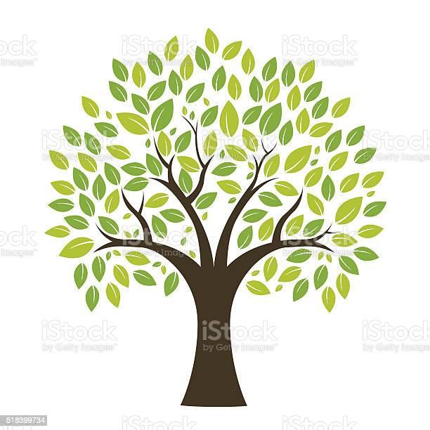 Tree background vector id518399734?b=1&k=6&m=518399734&s=612x612&h=ypgy9sjojiv87sq sutnm9y70wwuee s2ggbuwgy ea=