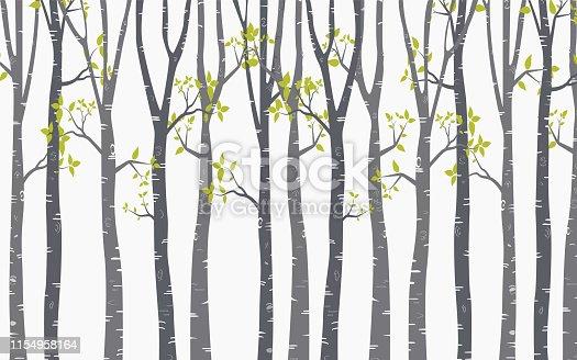Tree Birch design Background with birch forest vector