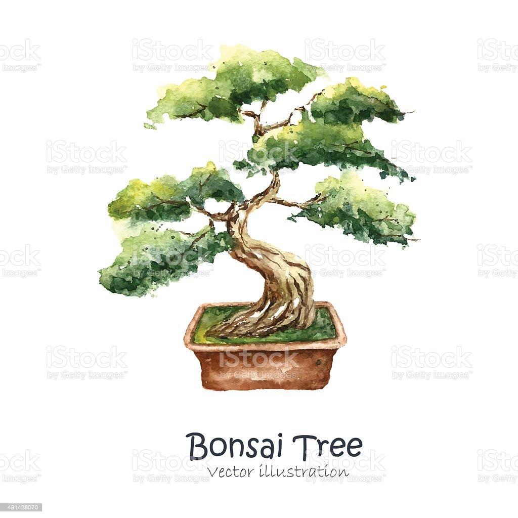 Tree Bonsai vector art illustration