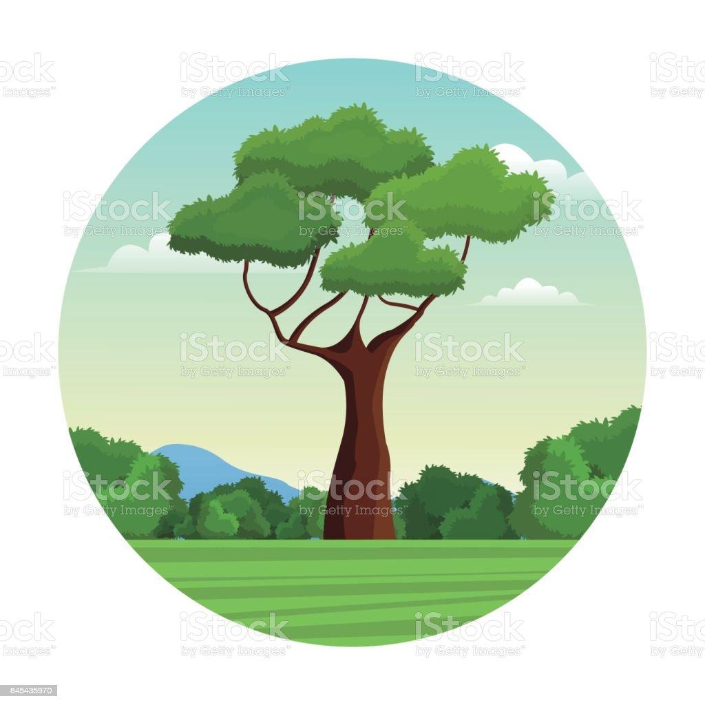 tree branch bushes forest landscape design vector art illustration