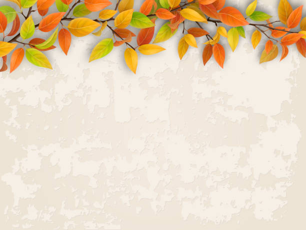 Tree branch on old plastered wall background. Tree branch with red and yellow foliage on old plastered wall. Autumn background. fall background stock illustrations