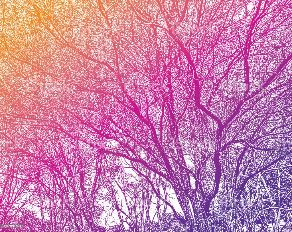 Tree branches background vector art illustration