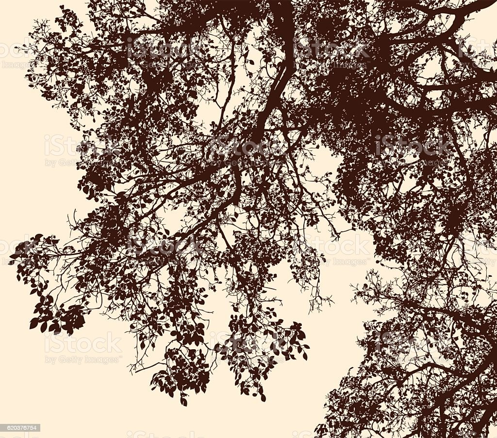 tree branches in the autumn forest tree branches in the autumn forest - arte vetorial de stock e mais imagens de abstrato royalty-free