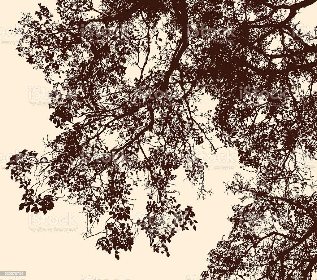 tree branches in the autumn forest tree branches in the autumn forest - stockowe grafiki wektorowe i więcej obrazów abstrakcja royalty-free