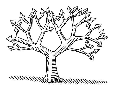 Branches Darbres Avec Dessin Des Empennages De Flèche