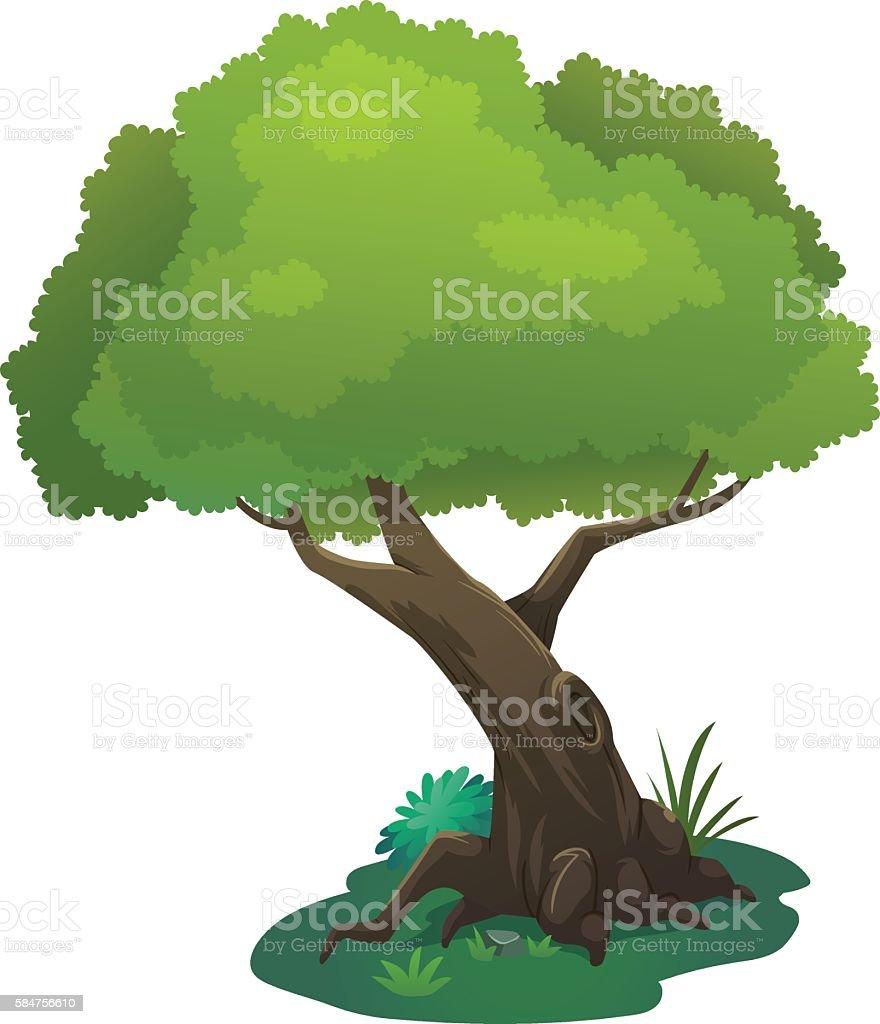 Baum comic stock vektor art und mehr bilder von ast - Baum comic bilder ...