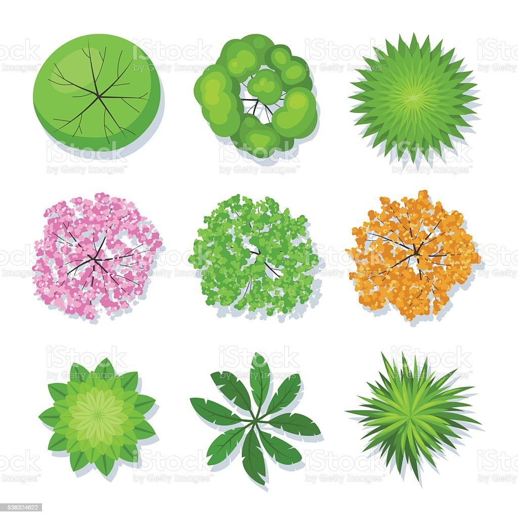 Tree collection top view vector art illustration