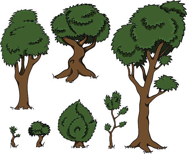 Pecan Tree Clipart