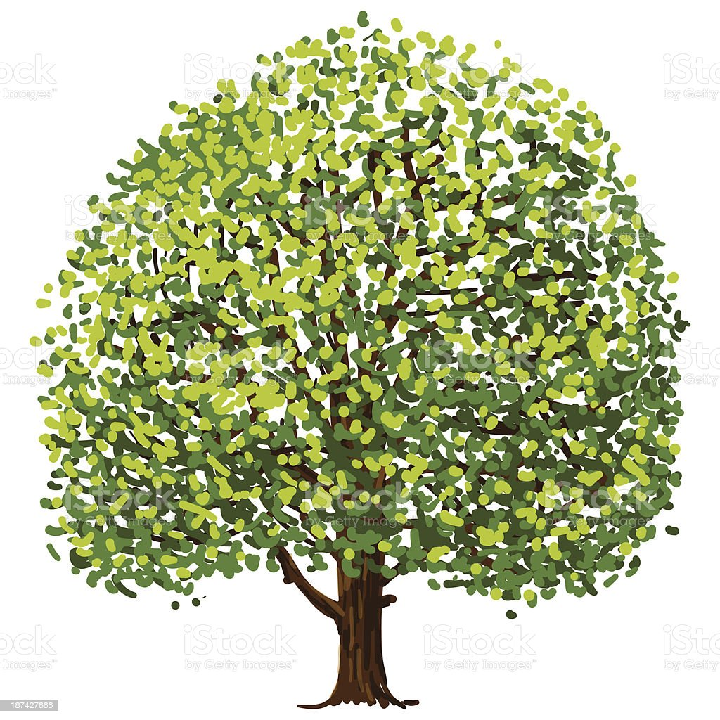 Tree Drawing Stock Vector Art & More Images of Art Product 187427666 ...