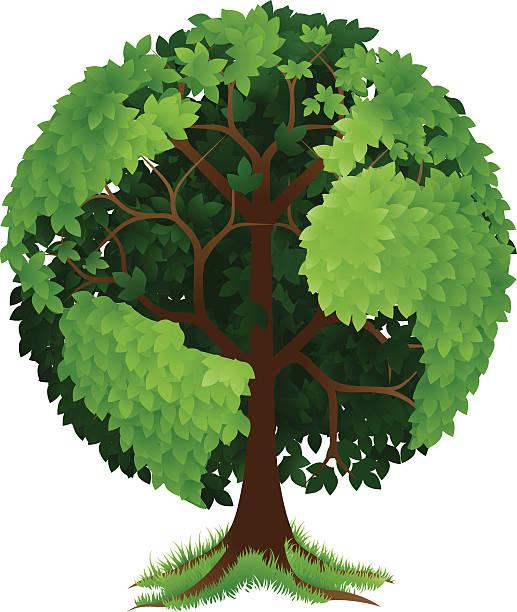 ilustrações de stock, clip art, desenhos animados e ícones de árvore da terra globo - alter do chão