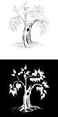tree ,ficus religiosa ,