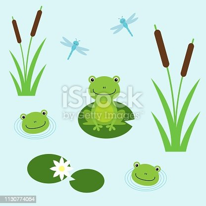 Tree frogs with lily and dragonflies. Illustration for children. Flat design style. Kawaii animal