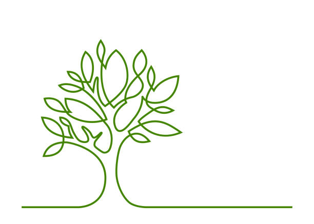 tree green one line Continuous line drawing of tree on white background. Vector illustration environmental issues stock illustrations