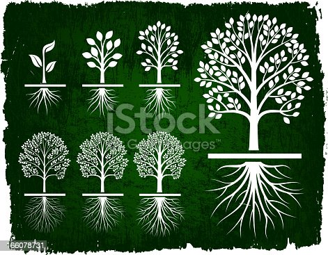 Tree Growing Green Grunge icon set