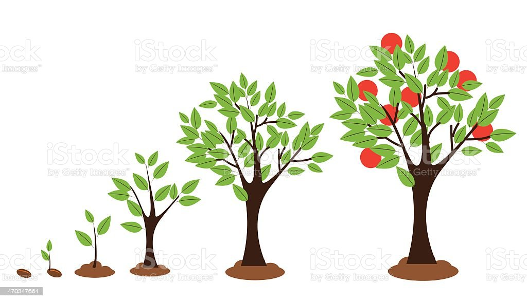 Tree Growth vector art illustration