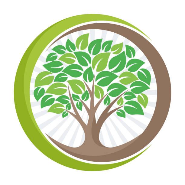 baum-symbol-symbol mit der bedeutung der wachsenden, entwickeln, oder verwalten die grüne umgebung. - umweltkonzept stock-grafiken, -clipart, -cartoons und -symbole