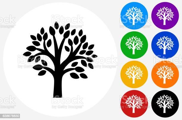 Tree icon on flat color circle buttons vector id638678830?b=1&k=6&m=638678830&s=612x612&h=dqqop3iyaxygpi5 jn2qzvsknl8rdiokpn3ptr7yxsm=