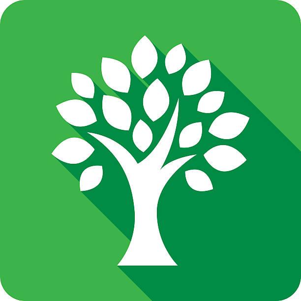 baum-symbol silhouette - stammbäume stock-grafiken, -clipart, -cartoons und -symbole