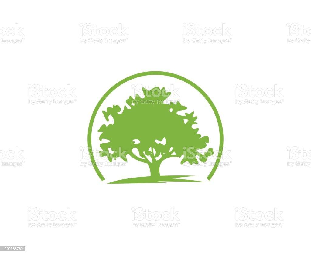 Baum-Symbol – Vektorgrafik