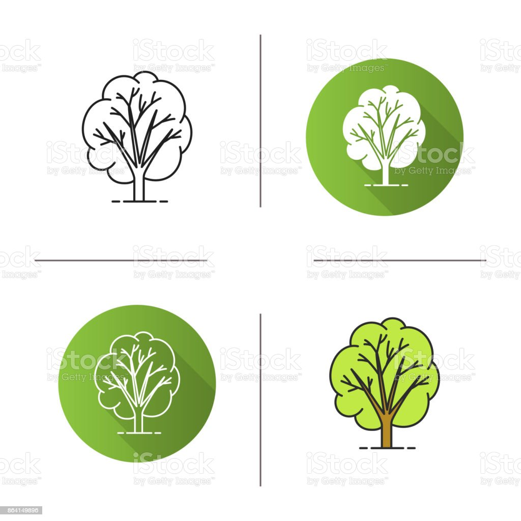 Tree icon royalty-free tree icon stock vector art & more images of botany