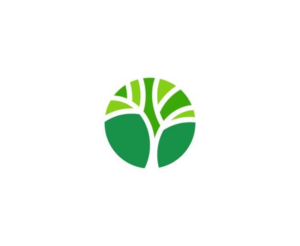 ilustrações, clipart, desenhos animados e ícones de ícone de árvore - tree