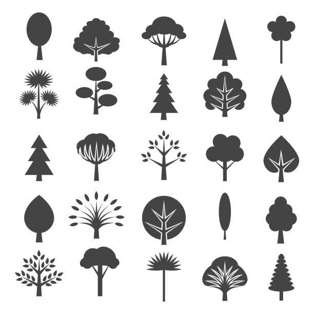 tree icons isolated on white background - trees stock illustrations