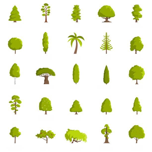 baum icons set, flachen stil - buchenholz stock-grafiken, -clipart, -cartoons und -symbole